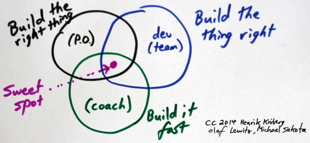 Beyond Roles in Scrum